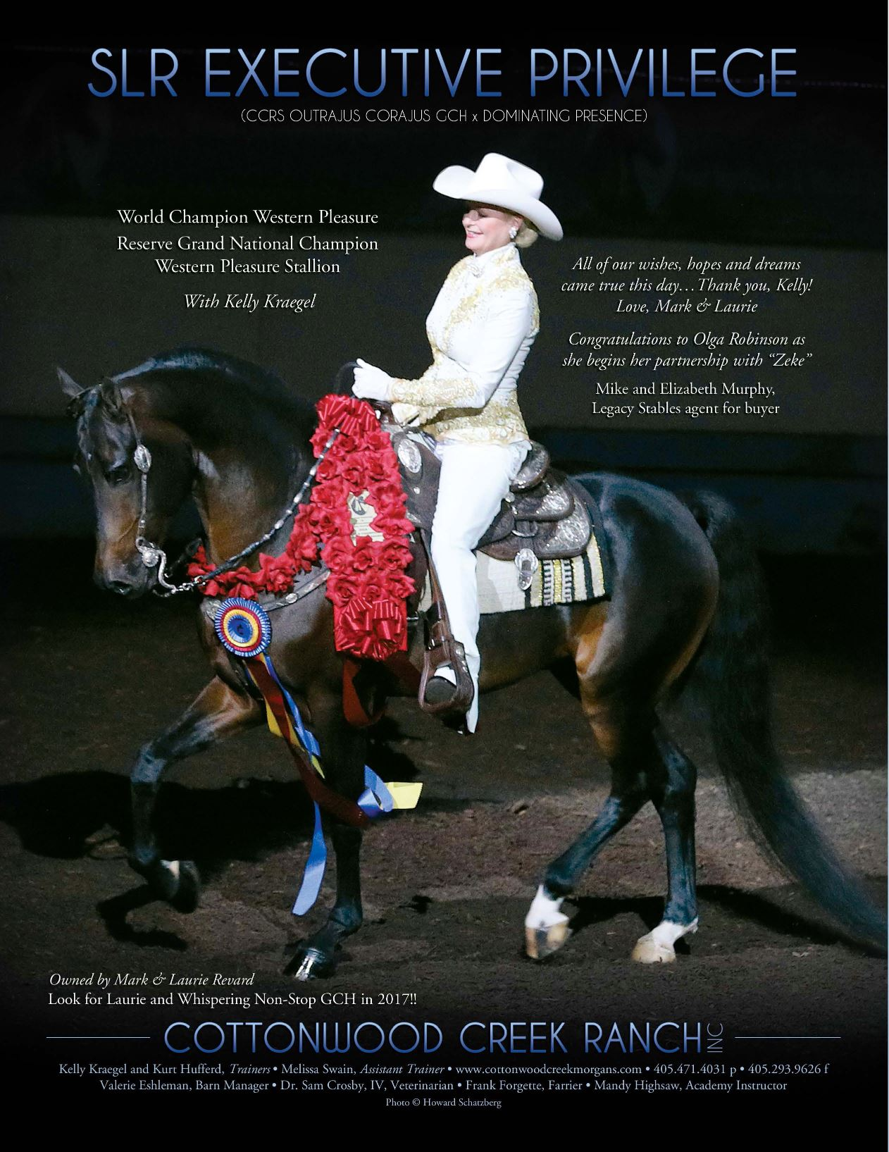 The Morgan Horse Dec 2016-4