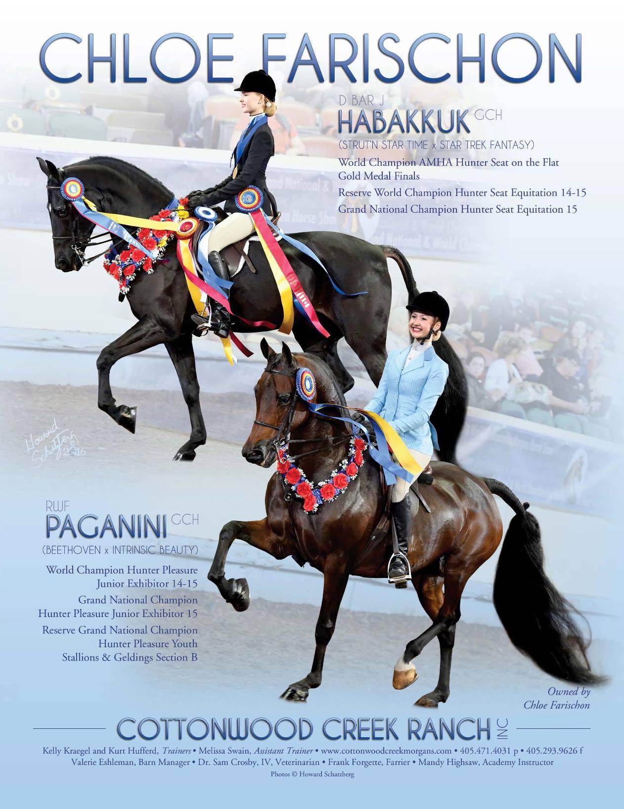 The Morgan Horse Dec 2016-5