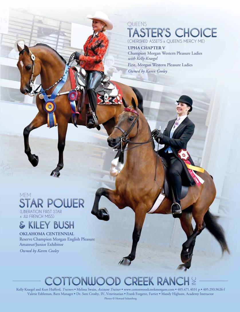 The Morgan Horse June 2017-3